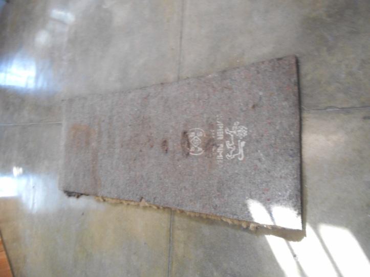 DSCN1241.JPG
