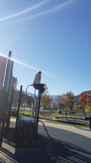 whistler park